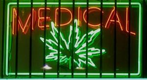 Chile a marihuana, HolenderskiSkun, Holenderski Skun