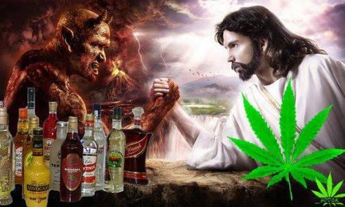 Czy na pewno wiesz co to jest marihuana?, HolenderskiSkun, Holenderski Skun