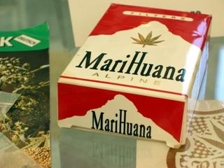 Jak uzyskać licencję lub kartę identyfikacyjną na legalne użytkowanie medycznej marihuany?, HolenderskiSkun, Holenderski Skun