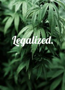 liscie-marihuany-napis-zalegalizowana