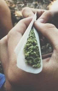 marihuana-zwijana-w-rulonik