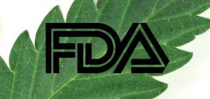 FDA analizuje czy marihuana powinna zachować status substancji grupy 1, HolenderskiSkun, Holenderski Skun