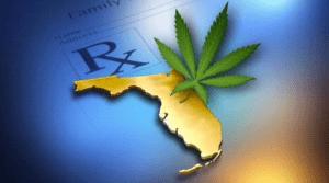 Sposób w jaki Floryda egzekwować będzie prawo do medycznej marihuany, HolenderskiSkun, Holenderski Skun