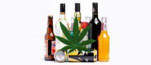 Czy marihuana może leczyć kac alkoholowy?, HolenderskiSkun, Holenderski Skun