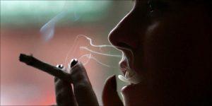 Zakup legalnej marihuany w stanie Nevada, HolenderskiSkun, Holenderski Skun