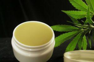 Cannabis może być stosowane w leczeniu łuszczycy, HolenderskiSkun, Holenderski Skun