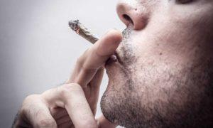Użytkownicy marihuany uprawiają więcej seksu, HolenderskiSkun, Holenderski Skun