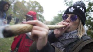 Obawy dotyczące legalizacji w Kanadzie, HolenderskiSkun, Holenderski Skun