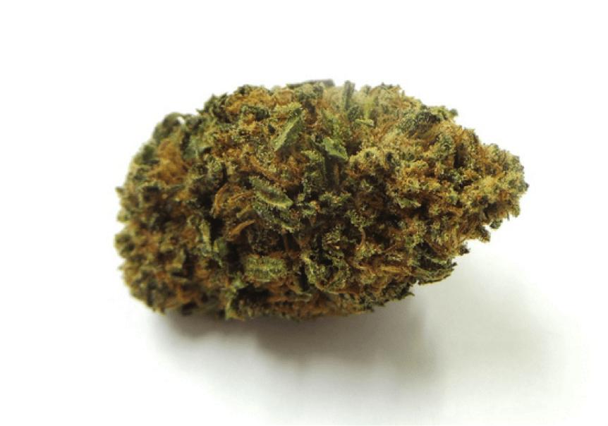 Marihuana sprawia, że seks jest o wiele bardziej przyjemny, HolenderskiSkun, Holenderski Skun