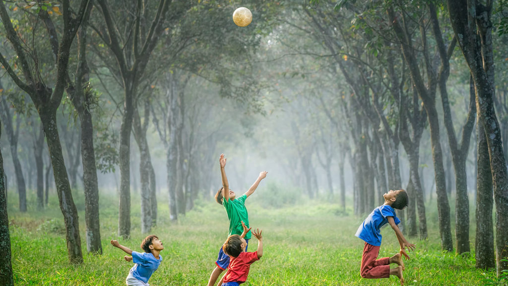 Matki autystycznych dzieci domagają się dostępu do marihuany, HolenderskiSkun, Holenderski Skun
