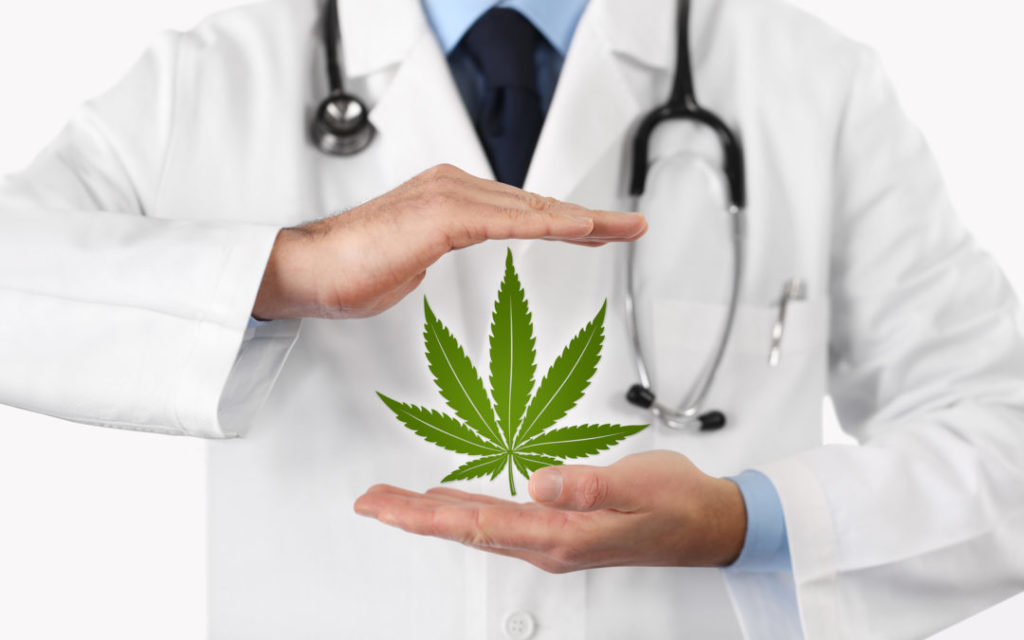 Medyczna marihuana w leczeniu nudności, HolenderskiSkun, Holenderski Skun