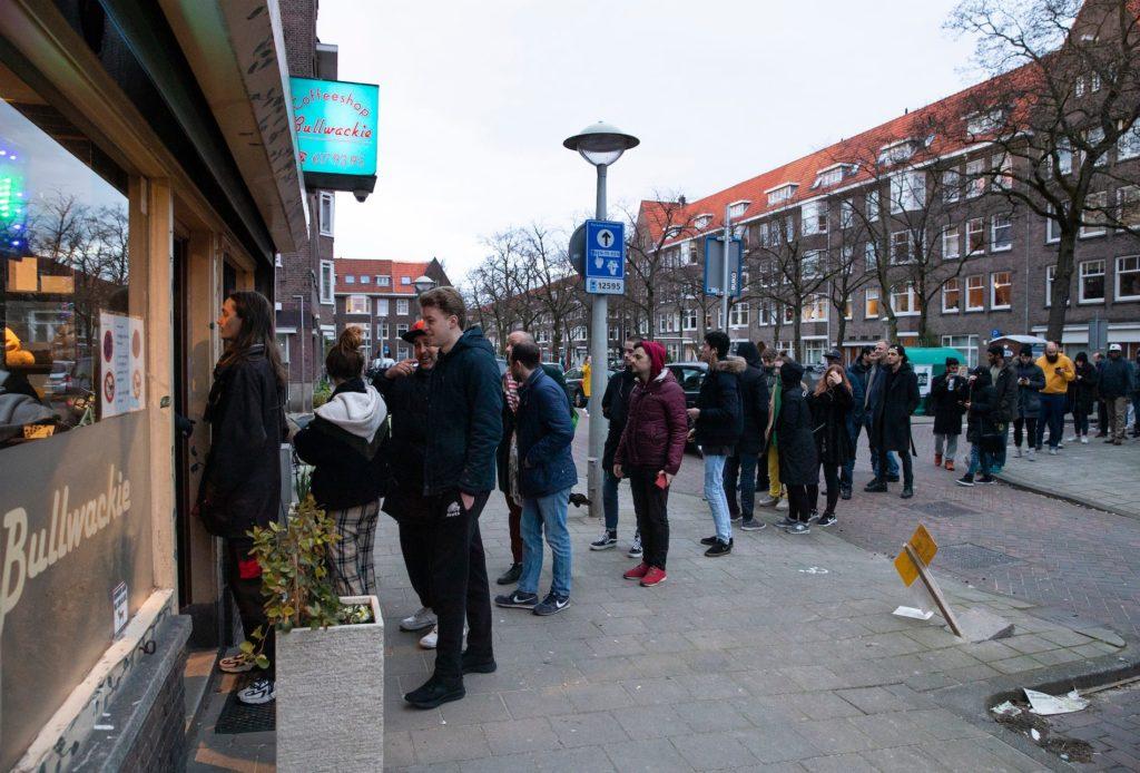 """Przychodnie cannabis uznawane za """"niezbędne usługi"""", HolenderskiSkun, Holenderski Skun"""