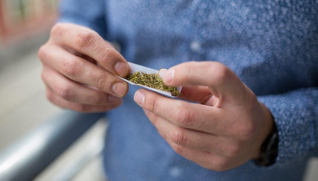 Większość Pacjentów Wybiera Marihuanę, HolenderskiSkun, Holenderski Skun