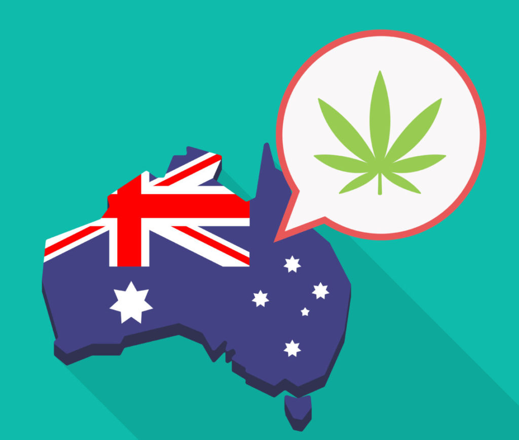 Legalizacja Marihuany w Australii, HolenderskiSkun, Holenderski Skun