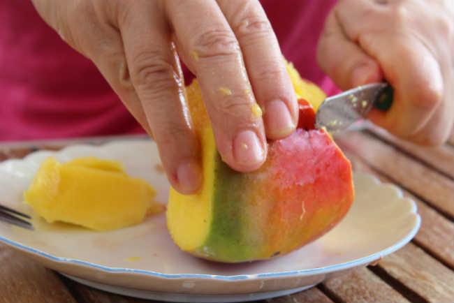 Czy Mango Wzmacnia Efekty Marihuany?, HolenderskiSkun, Holenderski Skun
