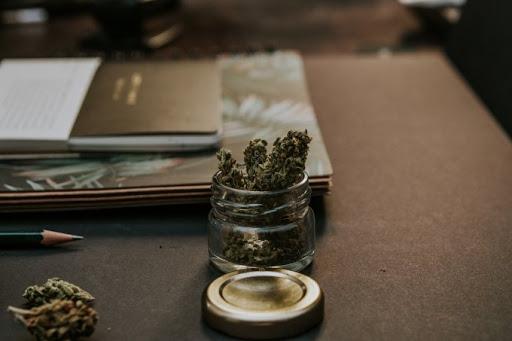 Popularność Używania Marihuany Wśród Seniorów Rośnie, HolenderskiSkun, Holenderski Skun